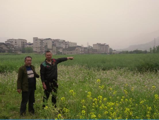 四川荥经:当地政府承诺成空文 灾后村民再次遭创伤